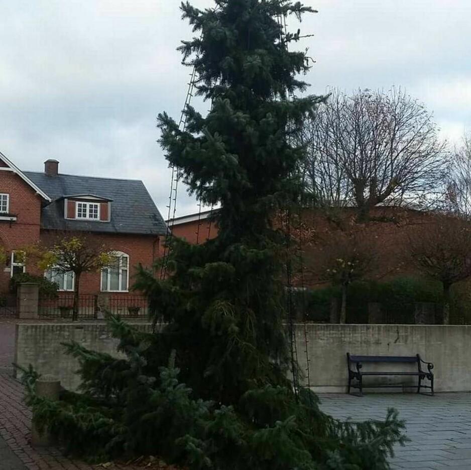 TRE: I Aars i Danmark har de pyntet til jul, men byens innbyggere er ikke veldig imponert. Foto: Privat
