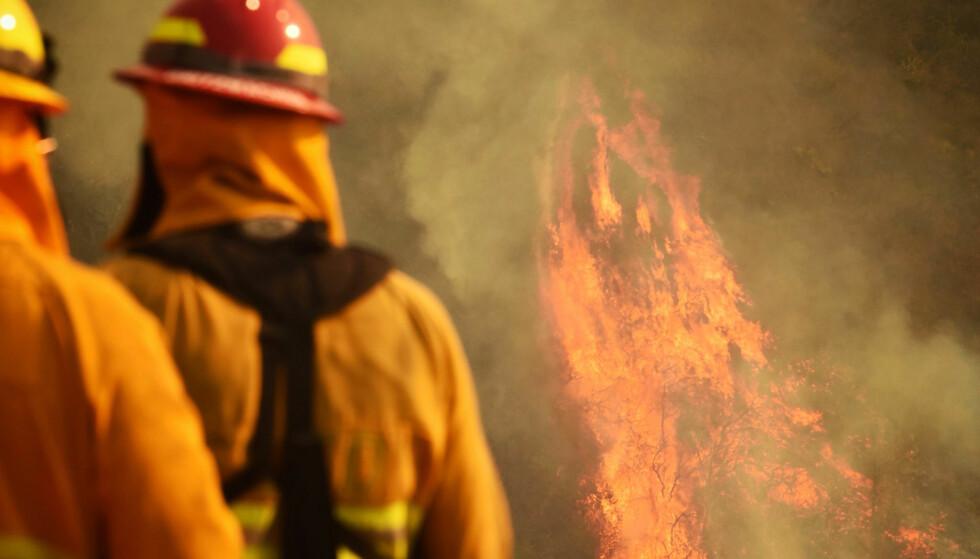 UBEREGNELIG VIND: Uberegnelige vinder gjør brannen «Thomas» ekstra vanskelig å hanskes med. Her holder brannmenn øye med flammene i en ikke utbrent lomme ved Montecito på onsdag. Foto: Mike Eliason/Santa Barbara County Fire Department via AP/NTB Scanpix