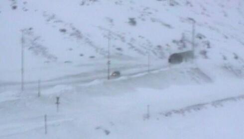 HAUKELI: Slik så det ut på E134 over Haukelifjell torsdag klokka halv tre. Foto: Vegvesenet