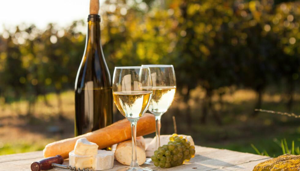 HØY KVALITET: Vinene fra Østerrike holder generelt høy kvalitet og bidrar med gode utgaver av både Riesling og Grüner Veltliner i ulike prissegment. Utvalget er svært vellykket og inneholder typeriktige og karakterfulle viner. Foto: Shutterstock / NTB Scanpix