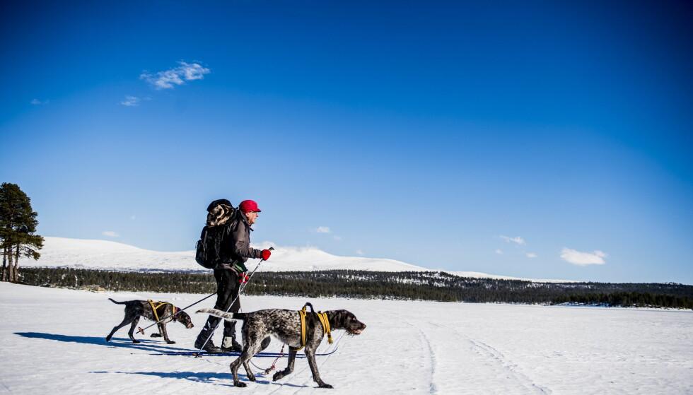 PÅSKE: Skal du være tilnærmet garantert sol i helligdagene i påska, må du til Vestlandet. Foto: Thomas Rasmus Skaug / Dagbladet