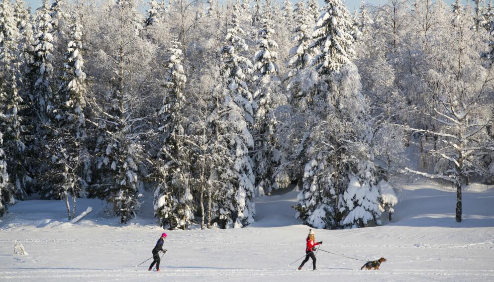 VÆR-HELGA: Det blir fint vær utover store deler av landet hele helga. Foto: Håkon Mosvold Larsen / NTB