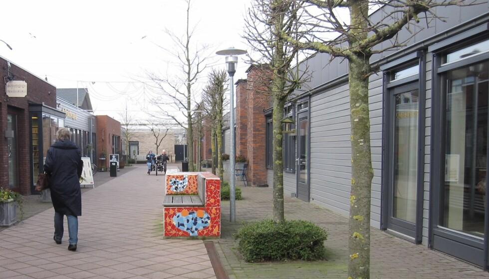 INSPIRERT: I Nederland har man allerede innført demenslandsbyer, der institusjonspreget med kalde korridorer er erstattet med en hjemlig stil som skal skape større trivsel. Foto: Oslo kommune