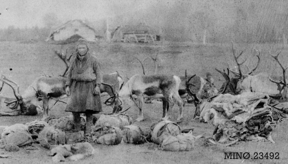 Et fortapt folk: Da reinsdyrene ble borte forsvant livsgrunnlaget for samene på Gauldalsvidda. Foto: Musea i Nord-Østerdal