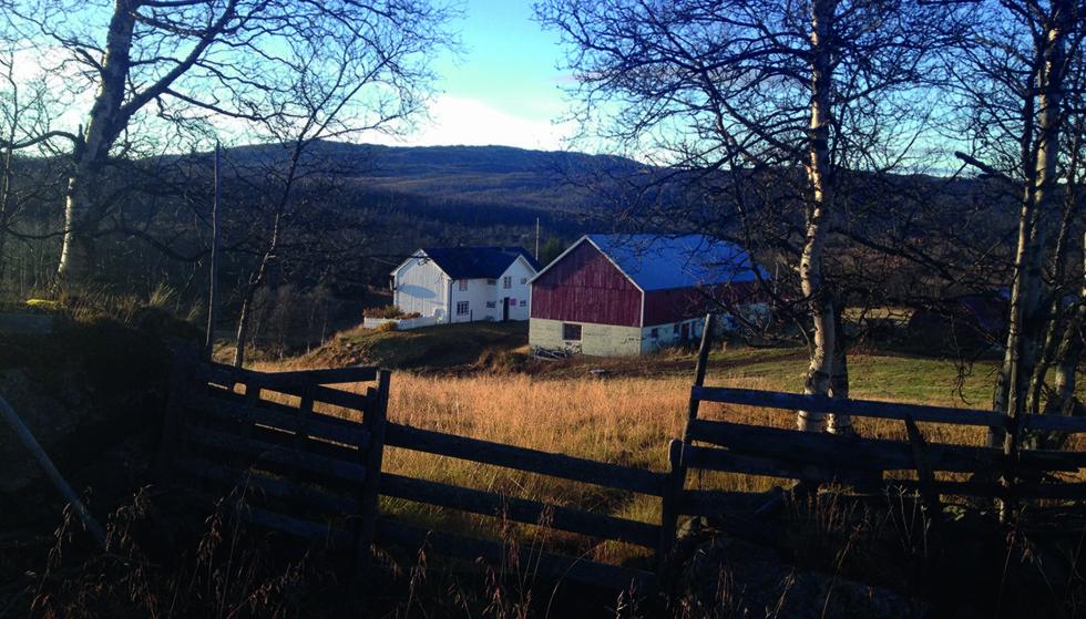 VANSKELIG VALG: Linda Erlien Borren gikk fra Trondheim til hjembygda Hessdalen i Sør-Trøndelag, for å bestemme seg for om hun skulle overta familiegården. Foto: FRA BOKA