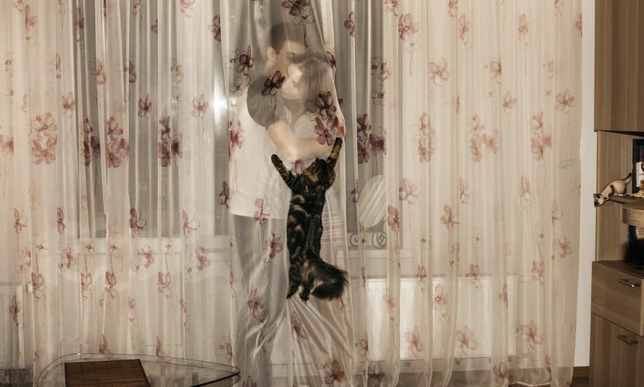 OMSLYNGET KJÆRLIGHET: Russiske Vlad Belomoin og Alina Snigiryova, begge 18 år, har flyttet til forstaden Greenlandia utenfor St. Petersburg. De kjenner ingen, men har katten og hverandre. Vakkert, Årets bilde. Foto Katinka Hustad