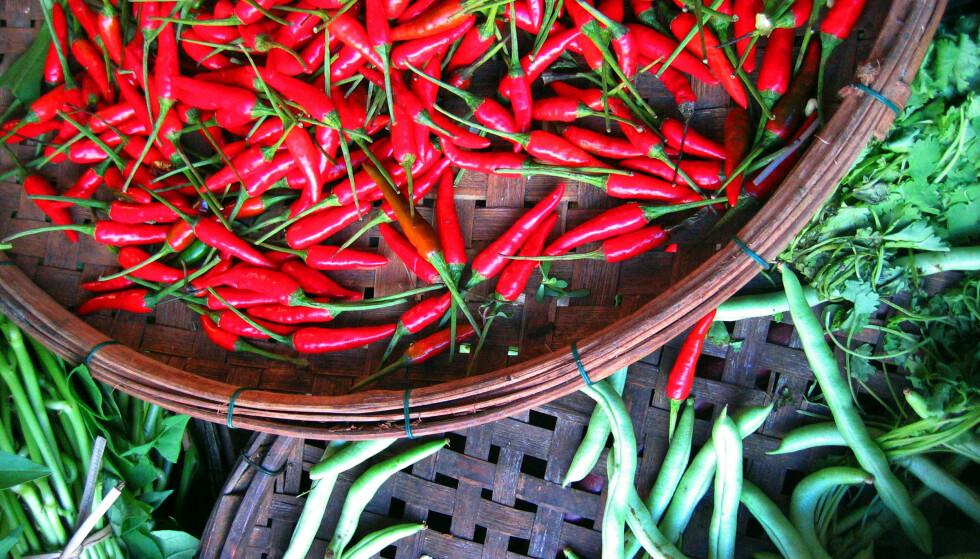 CHILI: Leger mener kruttsterk chili kan gi smertefull hjerneforstyrrelseFoto: Lise Åserud / SCANPIX