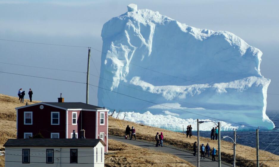 Hei der: Bildet viser det første av mange isfjell som ved hjelp av naturen passerte den lille byen Ferryland på øya Newfoundland i Canada i fjor. Nå vil en gjeng ingeniører og forskere bruke maskinkraft for å frakte isfjell på den andre enden av jordkloden. Foto: Jody Martin / Reuters / NTB Scanpix