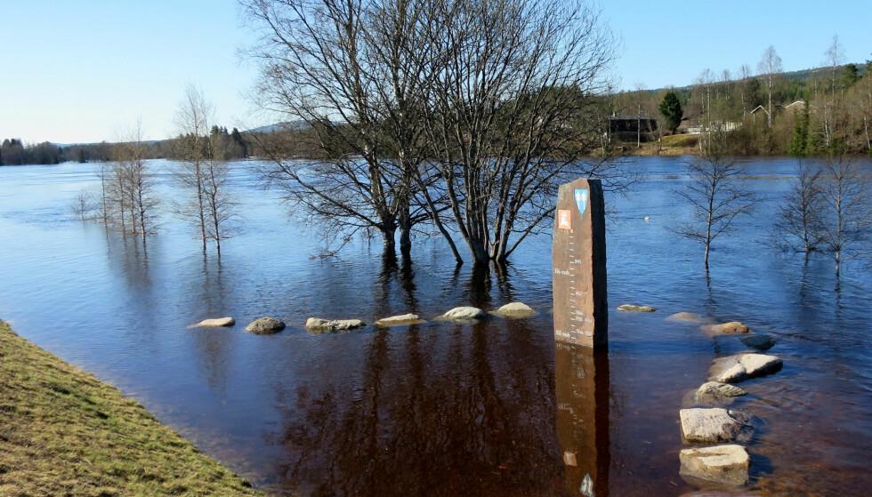 Vannstanden i Trysilelva stiger, men i formiddag var det fortsatt langt igjen til nivået fra 1995. Foto: Hanna Hagevik Bakke / NTB scanpix