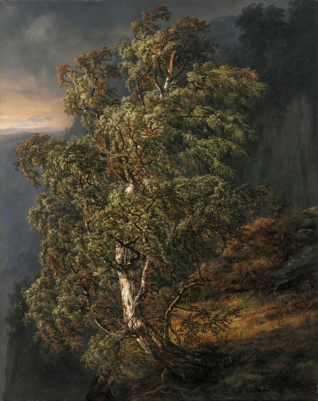 IKON: «Bjerk i storm» fra 1849 er J.C. Dahls mest slående bilde. Den trassige bjørka er kanskje tenkt som et symbol på 1800-tallets værbitte og standhaftige folk i et fattig, avsidesliggende Norge. Foto: KODE