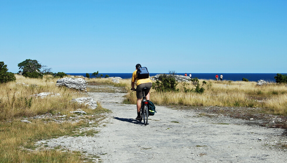 TOHJULSFERIE: Å sykle er en herlig måte å utforske øyas 77 mil lange kystlinje og flotte natur på. Foto: Gotland.net