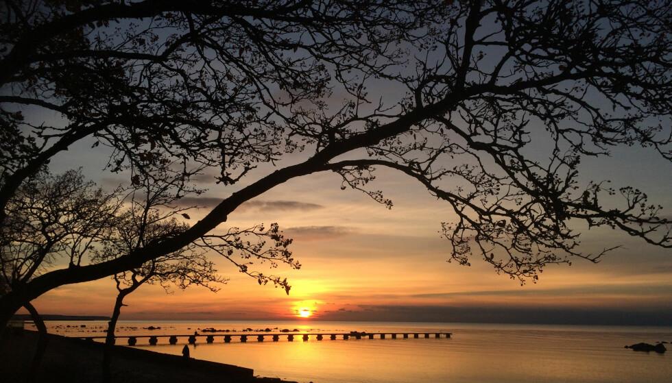 STORSLÅTT: Strandpromenaden er en fem kilometer lang gå- og sykkelvei på Visby, som vil gi deg nydelige naturopplevelser. Foto: Gotland.net