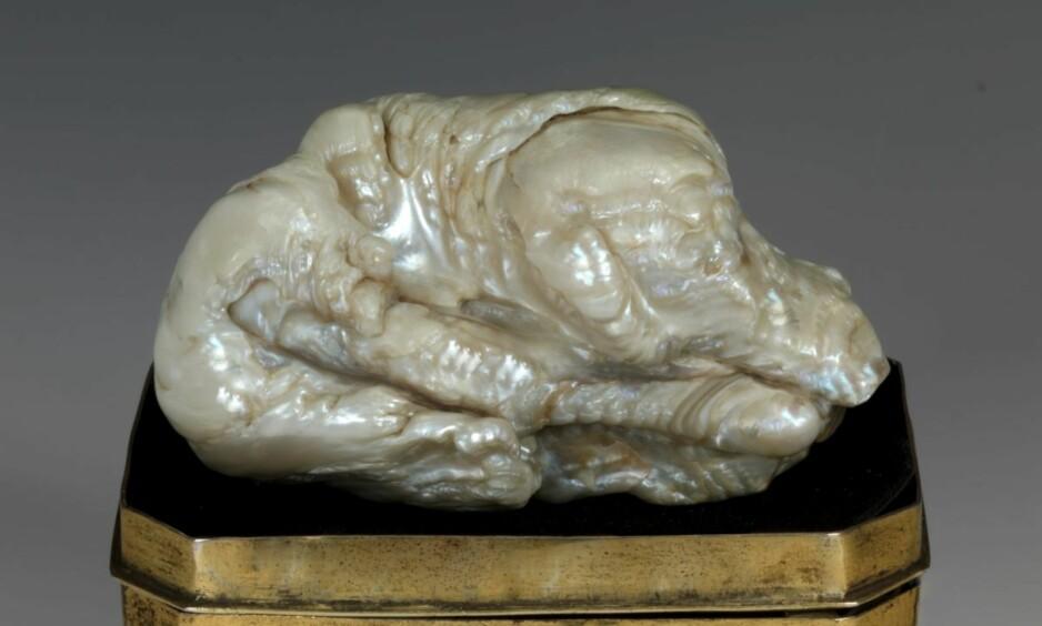 LØVEN: På grunn av sin spesielle form, har perlen fått tilnavnet «Den sovende løven». Foto: Venduehuis