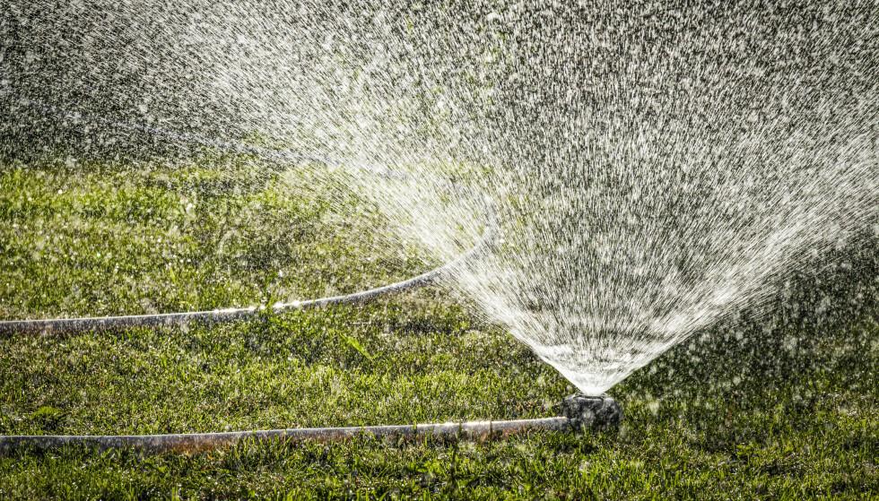 TA HENSYN: Vann- og avløpsetaten har møtt på utfordringer i det varme været. Nå anbefaler de folk i Oslo om å ta hensyn. Foto: SV Production / Shutterstock / NTB scanpix.