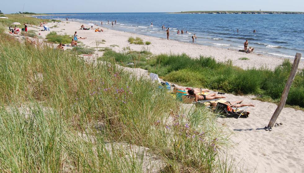 LANGGRUNN IDYLL: Barnevennlige Holmhallar strand har utsikt over Heligholm. Foto: Gotland.net