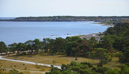 VAKKER NATUR: Östergarn ligger på nordsiden av øya og er et spektakulært skue. Foto: Gotland.net