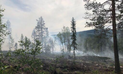 image: Stor skogbrann i Trysil
