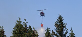 Myndighetene har brukt opp skogbrann-budsjettet