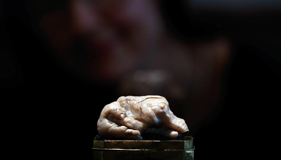 SOLGT: På grunn av sin spesielle form, har perlen fått tilnavnet «Den sovende løven». Foto: NTB scanpix