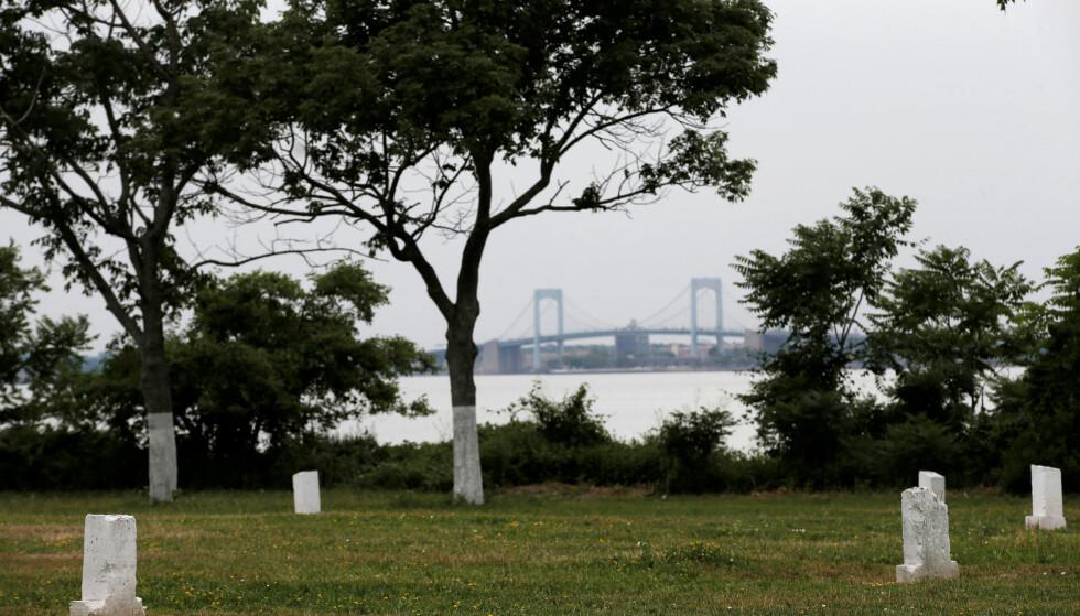 MASSEGRAV: Anslagsvis en million mennesker ligger begravet på Hart Island i New York. De fleste ble lagt i jorda uten seremonier, og det er heller ikke mange gravstøtter her. Nå arbeides det for å omgjøre øya, der publikum ikke har adgang, til en offentlig park. Foto: NTB Scanpix