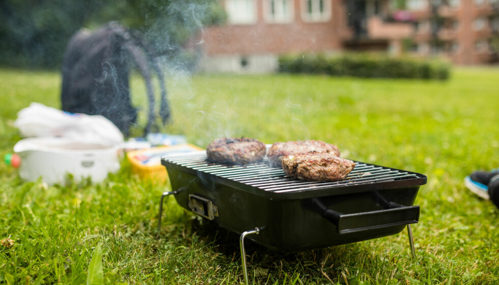 TIL GLEDE OG FORARGELSE: Griller florerer i sommervarmen. Illustrasjnsfoto: Audun Braastad / NTB Scanpix