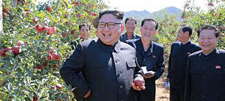 Derfor vil «alle» betale for Kims luksus