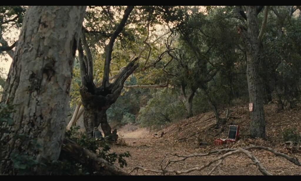 «Jeg tenkte du ville trives under dette treet, pappa, siden det minner litt om sjelen din.» Foto: HBO
