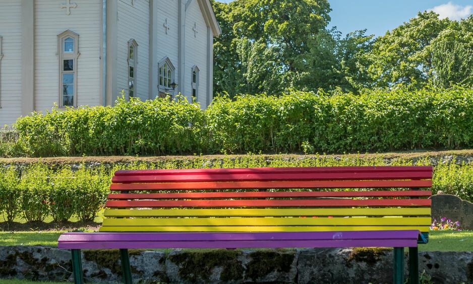 SKAM: Den norske kirke tar tydelig avstand fra homohat. Men vi bør ikke være sein til kritisk selverkjennelse og beklagelse, skriver Kristin Gunleiksrud Raaum i Kirkerådet.