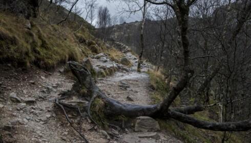 SLITT: Besøkstallene for vintersesongen november 2017 – mars 2018 er fordoblet i forhold til forrige vintersesong. Foto: Tommy Ellingsen / Dagbladet