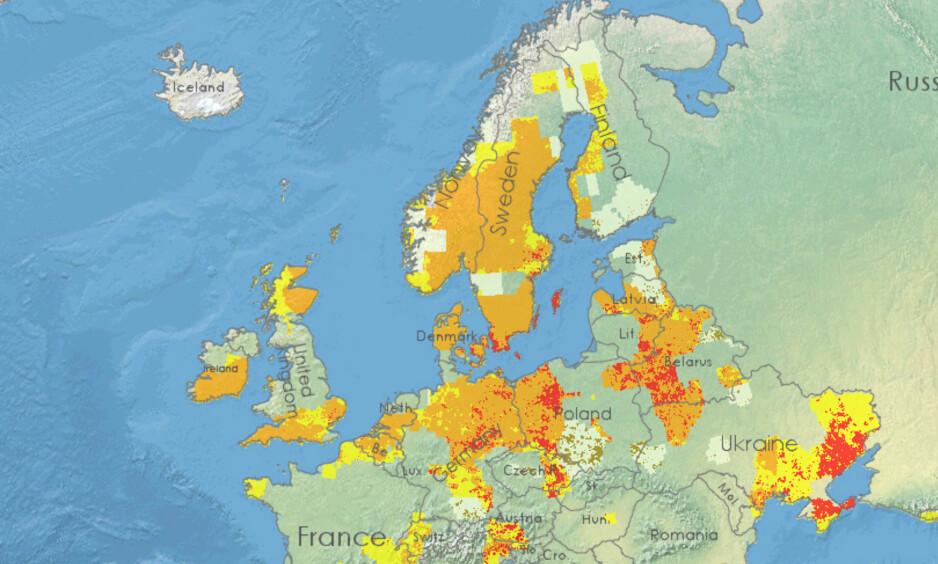 TØRKE: Dette bildet fra EU-kommisjonen viser hvor mye tørke det er i Europa. Informasjonen bildet baserer seg på, er innhentet de ti første dagene i juli.