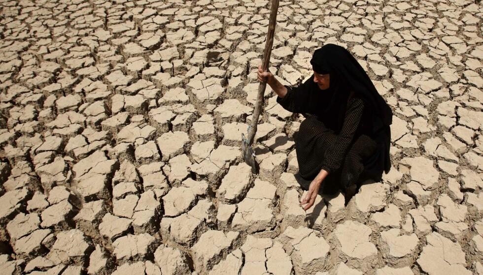 VERRE ENN I NORGE: Tørken herjer i Midtøsten også. Her er det ikke store muligheter for å bruke jorda. Arkivfoto: AP/NTB Scanpix