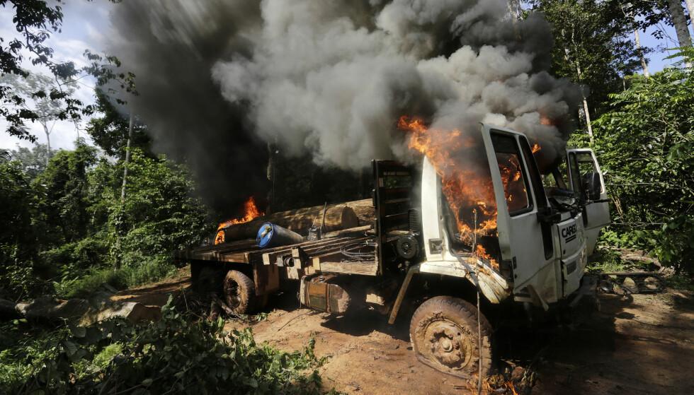 STRID: Lastebilen til en gruppe tømmerhoggere er satt i brann av en gruppe urfolk i regnskogstaten Maranhao i Brasil. Bildet dokumenterer hvor ampert det blir mellom illegale tømmerhoggere og miljøvernere og urfolk. Aldri har det vært farligere å forsvare miljøet enn nå. Foto: Reuters / NTB Scanpix