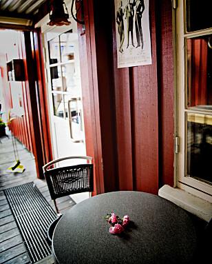 ROSE: Et par roser var lagt ned på et bord utenfor utestedet mandag formiddag. Foto: Bjørn Langsem / Dagbladet