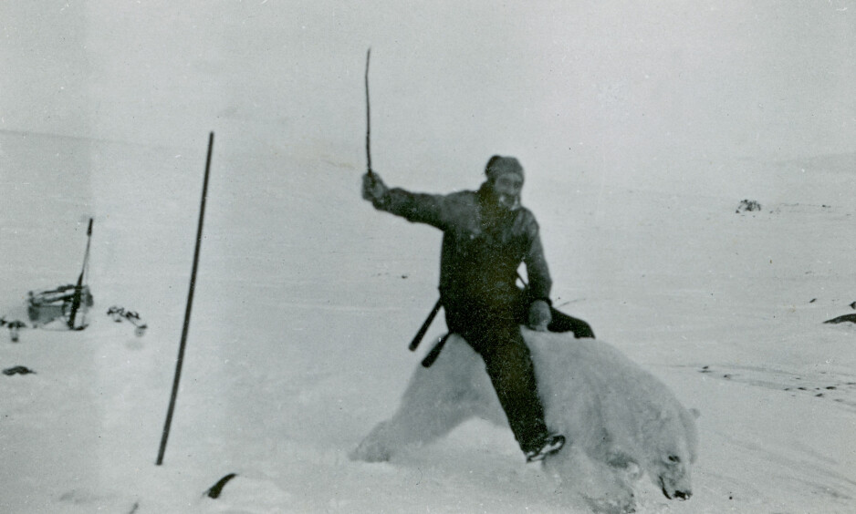 <strong>VILL:</strong> Henry Rudi temmet flere isbjørn da han tilbragte vintrene i arktiske, ugjestmilde strøk. Foto: Tromsø Museum.