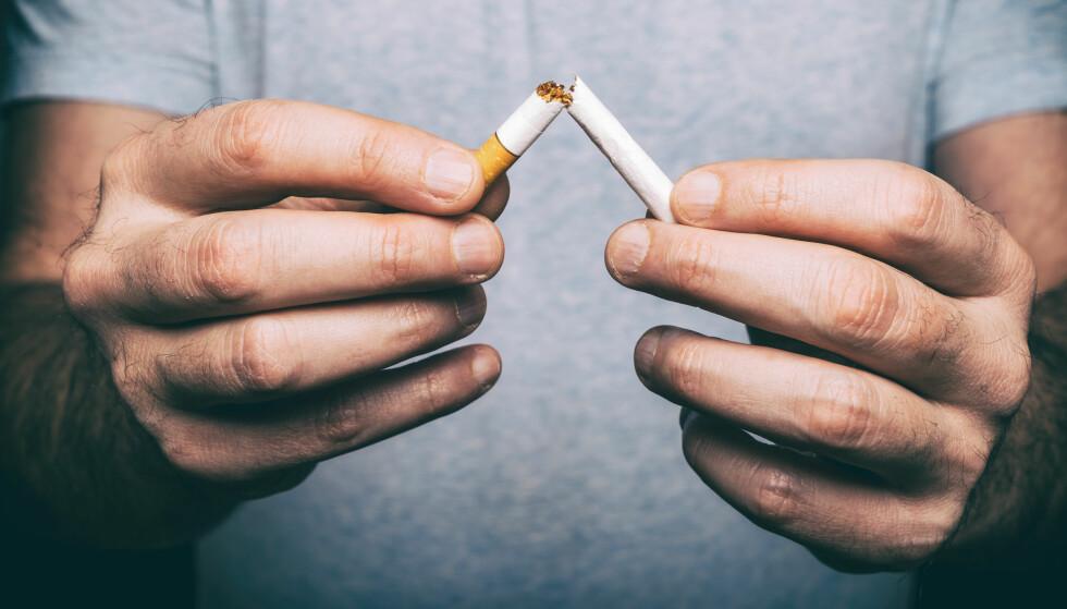BILDETEKST: Helsedirektoratets nye chatbot skal gi umiddelbar støtte og motivasjon når røyksuget kommer for dem som vil slutte med røyk eller snus i «Stopptober». Foto: Shutterstock / NTB Scanpix