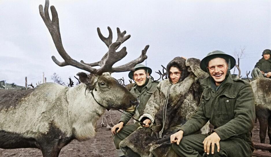 Veiviserne: Helt fra slaget om Narvik våren 1940 spilte samene en aktiv rolle som loser og veivisere for flyktninger og allierte soldater. Foto: Ukjent/Fargelagt av R. White