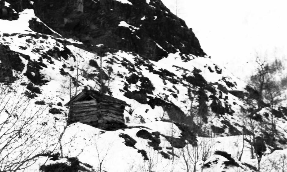 1979: Starten på prosjektet «Gjerdeløa». Denne gamle løa flyttet kunstner Marianne Heske fra Tafjord på Sunnmøre til Pompidou-senteret i Paris. Foto: Privat