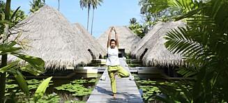 Nytelse for kropp og sjel i Thailand