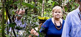 Kast ut palmeoljen, kjære stortingspolitiker