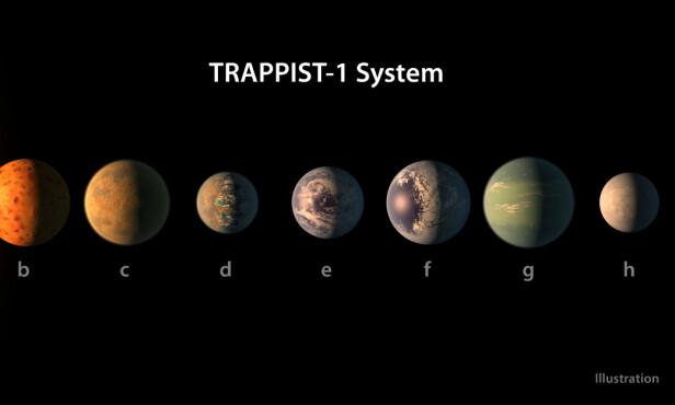 Illustrasjon av hvordan planetene i TRAPPIST-1-systemet KAN se ut. De tre midterste planetene anslås å være «jordlignende» og har derfor fått vann på overflaten av illustratøren. Illustrasjon: NASA/JPL-Caltech