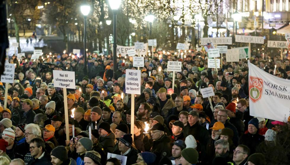 DEMONSTRASJONER: Flere tusen mennesker møtte opp til fakkeltog og demonstrasjon mot regjeringens ulvepolitikk utenfor Stortinget i forrige uke. Foto: Cornelius Poppe / NTB scanpix