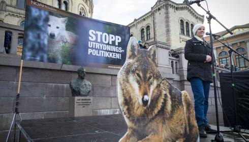 FOR ULV: NOAH-leder Siri Martinsen holdt lørdag appell foran Stortinget i en større demonstrasjon for ulv i og andre rovdyr i norsk natur. Foto: Heiko Junge / NTB scanpix
