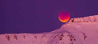 Mandag morgen kan du oppleve en spektakulær supermåneformørkelse
