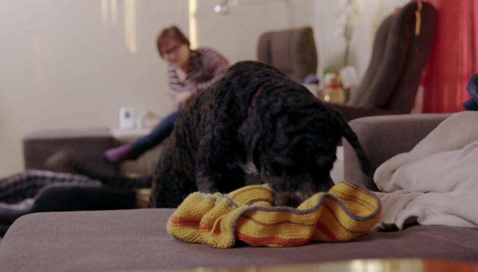 HENTER: Med kommandoen «Ta med!» løper Linda bort og henter strikketøyet til matmor Mette. Foto: Monster/NRK
