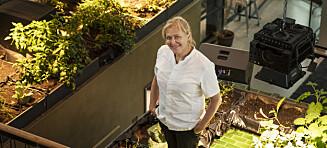 Heidi Bjerkan raste etter restaurant-skandalen. Nå er hun Michelin-favoritt
