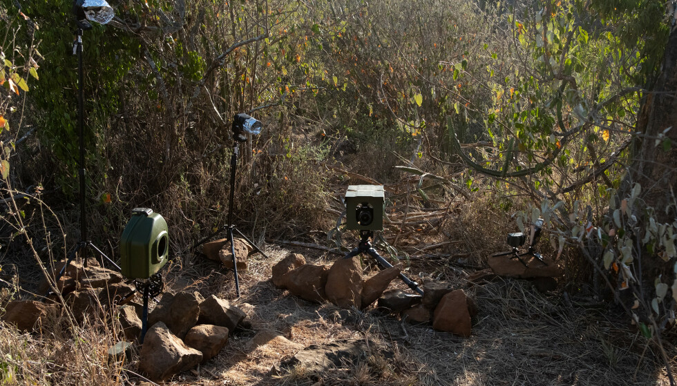 Foto: Burrard-Lucas Photography/ Camtraptions Camera Trap tatt i Laikipia Wilderness Camp in Kenya
