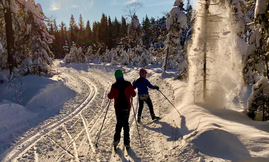 PÅ TUR: Camilla Fjeldheim Hovelsrud la ut på tur i Marka med sine to barn, ett av dem har Cerebral parese. «Turen hadde vært fullkommen, hadde det ikke vært for andre skiløperes fremferd og opptreden» skriver artikkelforfatteren. Foto: Privat