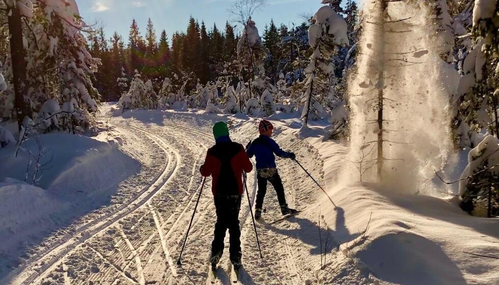 PÅ TUR: Camilla Fjeldheim Hovelsrud la ut på tur i Marka med sine to barn, ett av dem har Cerebral parese. «Turen hadde vært fullkommen, hadde det ikke vært for andre skiløperes fremferd og opptreden», skriver hun. Innlegget har vakt sterke reaksjoner. Foto: Privat