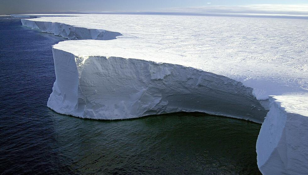 LØSRIVES: Klippesiden av det massive isfjellet B-15A i Antarktis. I 2001 brøt deler av isfjellet seg vekk fra Ross Ice Shelf i Antarktis. I 2004 advarte forskere om at isbolken forstyrret luft- og vannstrømmer som vanligvis bryter opp is i McMurdo Sound, og at disse forstyrrelsene kan lede til massiv pingvindød. Foto: NTB scanpix