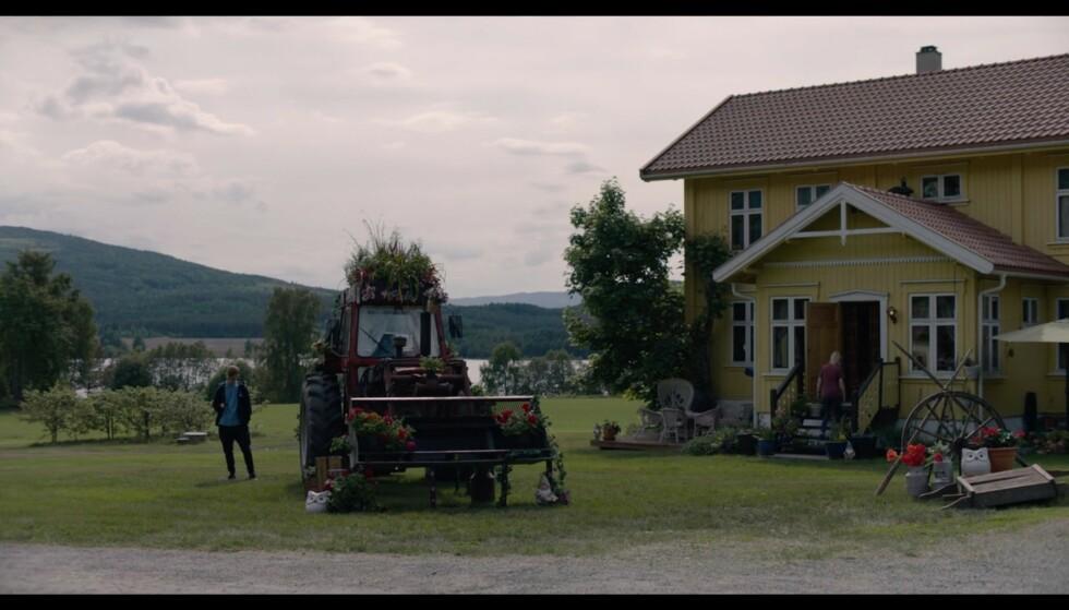 Ikke mange vet at første utkast til refrenget i Lillebjørn Nilsens «Barn av Regnbuen» ikke var «En himmel full av stjerner», men «En traktor full av blomster». Foto: NRK
